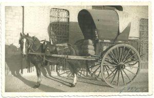sal riera carro caballos 1950